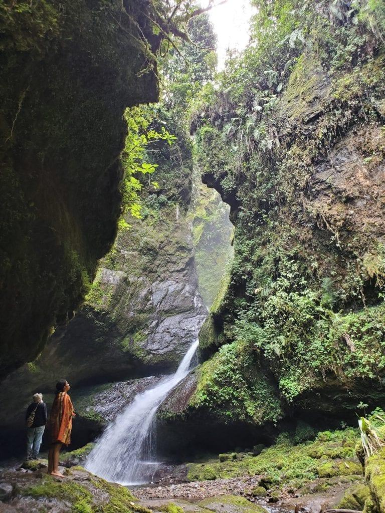 Cueva de los Guacharos Jardin Colombia