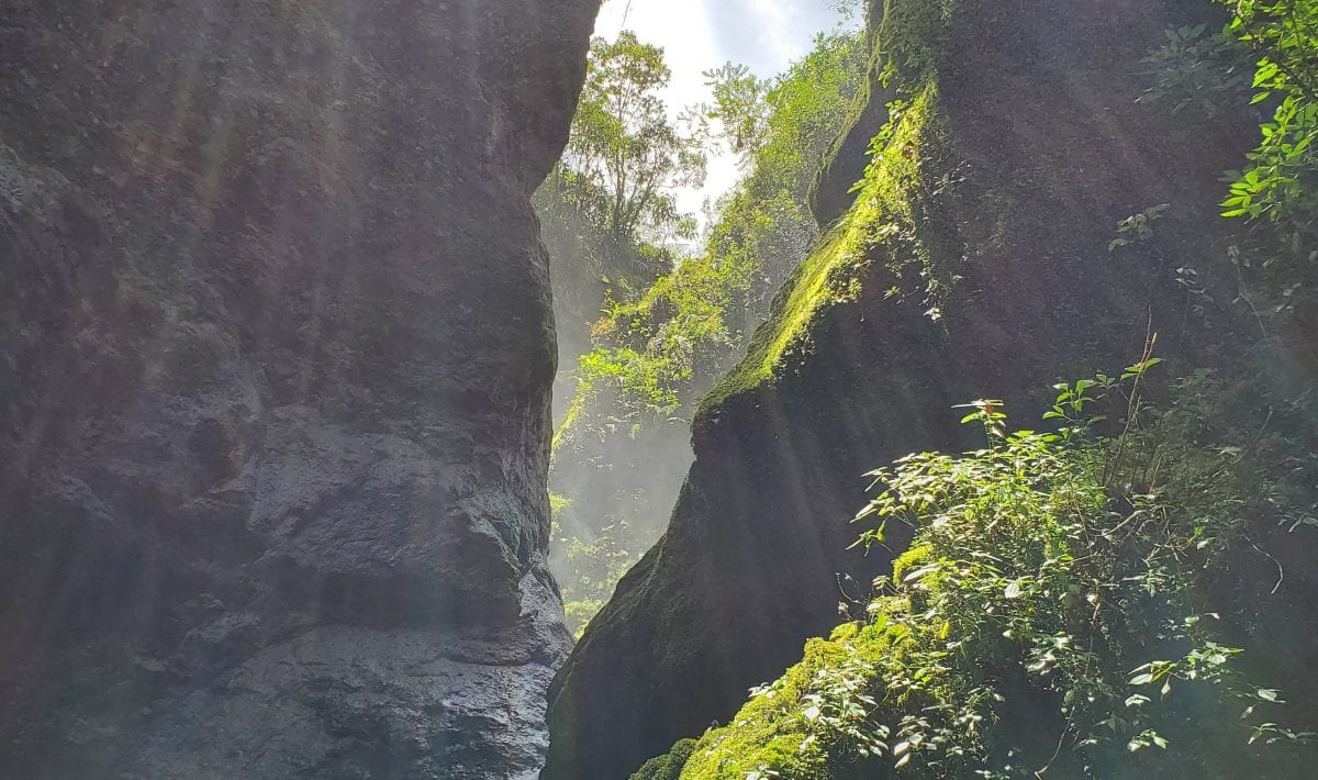 Jardin Waterfall