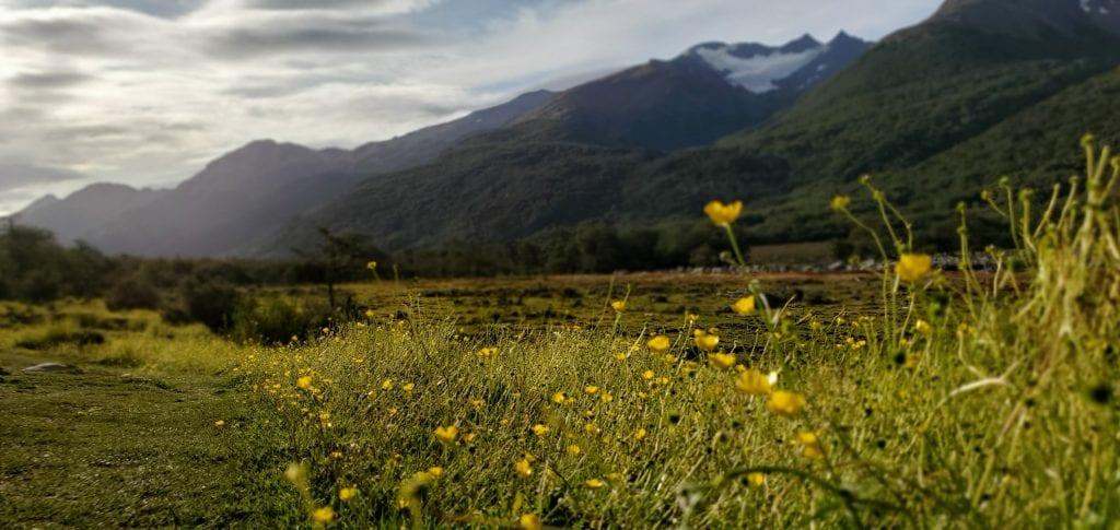 Ushuaia, Argentina - Glaciar Vinciguerra valley