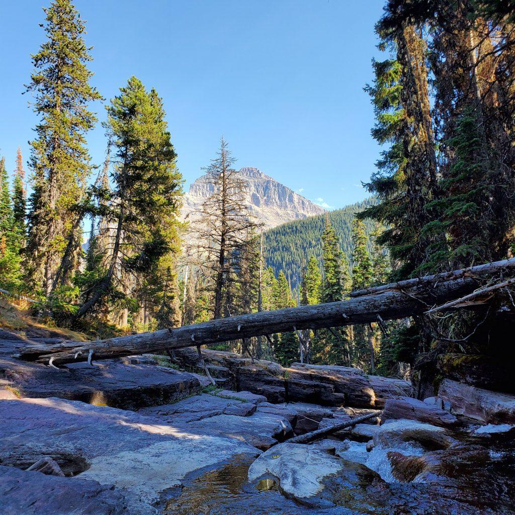 Deadwood Falls Glacier National Park